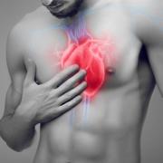 klatka piersiowa mężczyzny z naniesionym graficznie układem sercowo-naczyniowym